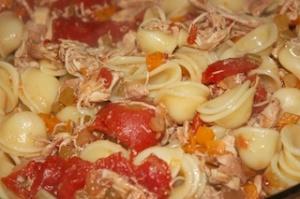 Tuesday dinner: Chicken ragu over orecchiette